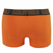 Boxer Orange Friend by Smiley