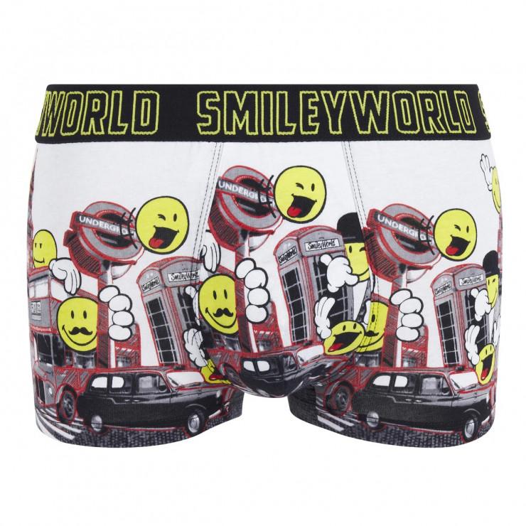 Boxer Big Ben by Smiley